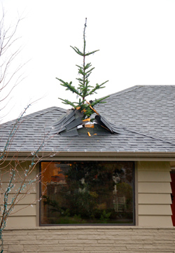 Christmas Decorations Tree Through Roof : Christmas tree breaks through roof of man s house but not