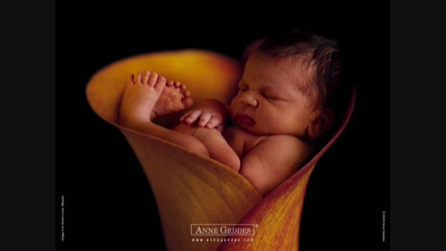Famed baby photographer anne geddes talks about new focus