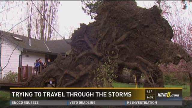 Wind storm whips through Western Washington