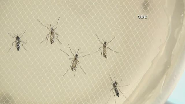 King County's first Zika Virus case