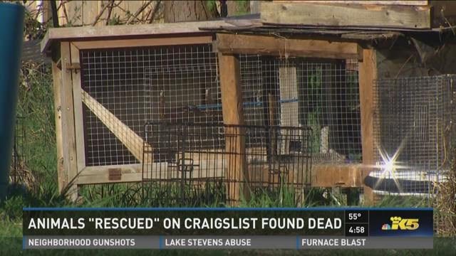 Prosecutor: Man found pets to torture on Craigslist