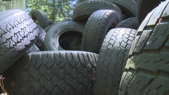 Whatcom County tire pile