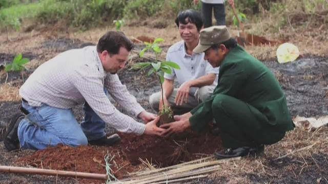 Peace Trees Vietnam is helping the Vietnamese people remove bombs from the war and plant trees instead.