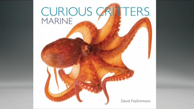Wildlife photographer discusses new Curious Critters book