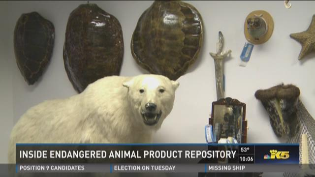 Inside endangered animal product repository
